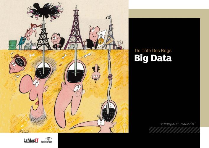 Du côté des bugs: recueil de dessins sur le Big Data